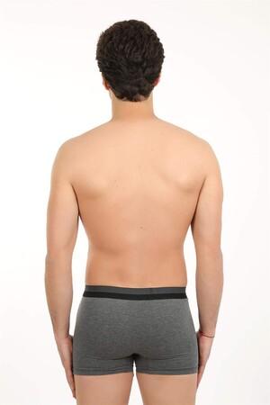 Angelino İç Giyim - Erkek Likralı Boxer 40057 (1)