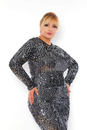 - Büyük Beden Kadife Zara Pul Payet Balık Abiye Elbise BYM3225 Gümüş (1)
