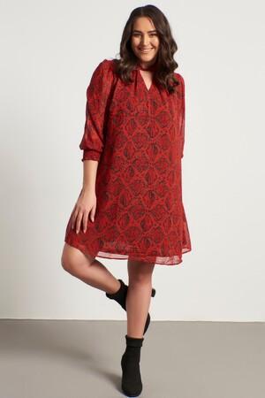 - Yaka Detaylı Gipeli Şifon Elbise (1)